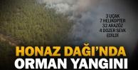 Honazda orman yangını