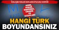 Denizliye yerleşen hangi Türk boyundansınız?