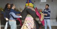 Sarayköy'de  develere 'havut giydirme' töreni