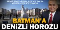Büyükşehir Batmana park yaptı, içine de horoz heykeli koydu