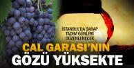 Çal, ilki gerçekleştirecek, şarap turizmine yönelecek