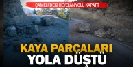 Çameli'de heyelan yolu kapattı