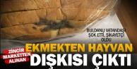 Ekmekten hayvan dışkısı çıktı iddiası