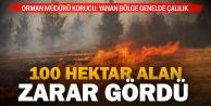 Akhanda 100 hektar alan yandı