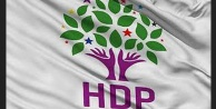 HDPnin milletvekili adayları