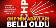 İşte CHPnin 24 Hazirandaki milletvekili adayları