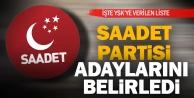 Saadet Partisinin Denizlide 24 Haziran seçimleri milletvekili adayları