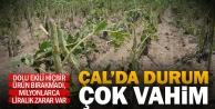Çal'da dolu, tarımı vurdu