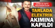 Güney CHP gençlik kolları yöneticisi elektrik akımına kapılarak öldü