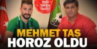 Denizlispor, Mehmet Taş#039;ı renklerine bağladı