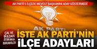 Ak Partinin ilçe adayları açıklandı