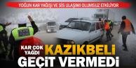 Kar ve yoğun sis ulaşımı olumsuz etkiledi