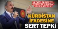 HDPli Temellinin 'Kürdistan ifadesine Tinden tepki: Bu adam ne zırvalıyor