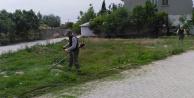 Çivril Belediyesi'nden bahar temizliği