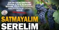 Şarap fabrikaları fiyatı düşük tutunca üzüm üreticisi 'kurutup satalım' çağrısı yaptı