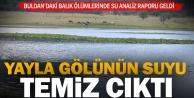 Yayla Gölü Balık ölümlerinde analiz raporu açıklandı: Su temiz
