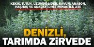 Denizli, 7 farklı tarım ürününde ülke lideri