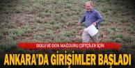 AK Parti Milletvekili Tin: quot;Dolu ve dondan zarar gören çiftçiler için girişimde bulunacağızquot;