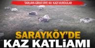 Sarayköy#039;de kaz katliamı