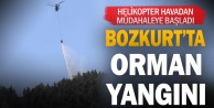 Bozkurt#039;ta orman yangını