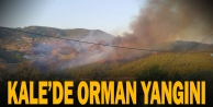 Kale#039;de  orman yangını