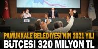Pamukkale Belediyesi'nin 2021 yılı bütçesi 320 milyon TL