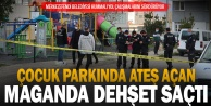Parkta rastgele ateş açan saldırganın önüne çocuklar zarar görmesin diye geçen vatandaş yaralandı