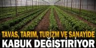 Tavas, tarım, turizm ve sanayide kabuk değiştiriyor