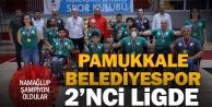 Pamukkale Belediyespor 2. ligde