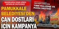 Pamukkale Belediyesi can dostları için kampanya düzenledi