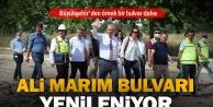 Ali Marım Bulvarı yenileniyor