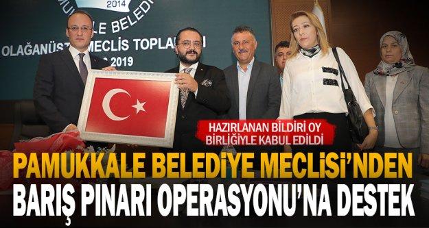 Pamukkale Belediye Meclisi'nden Barış Pınarı Operasyonu'na destek