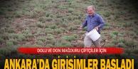 AK Parti Milletvekili Tin: 'Dolu ve dondan zarar gören çiftçiler için girişimde bulunacağız'